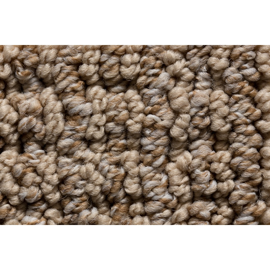 Royalty Carpet Mills Active Family Solstice Nostalgic Berber Indoor Carpet