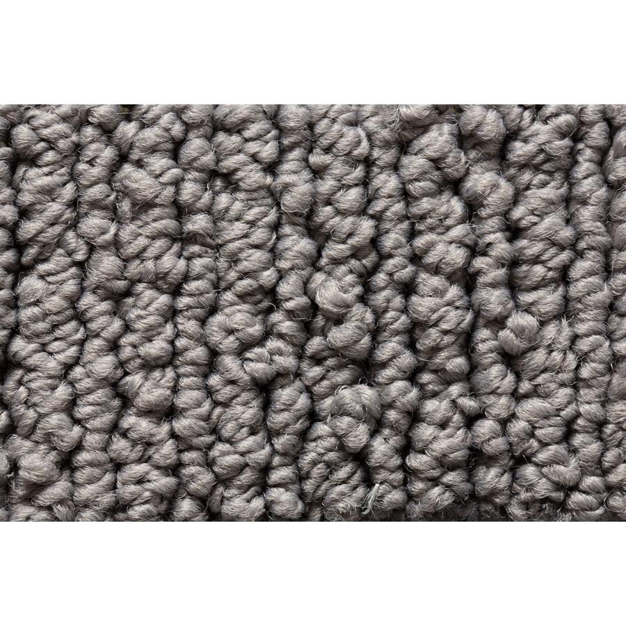 Royalty Carpet Mills Active Family Sojourn Industrial Berber/Loop Interior Carpet