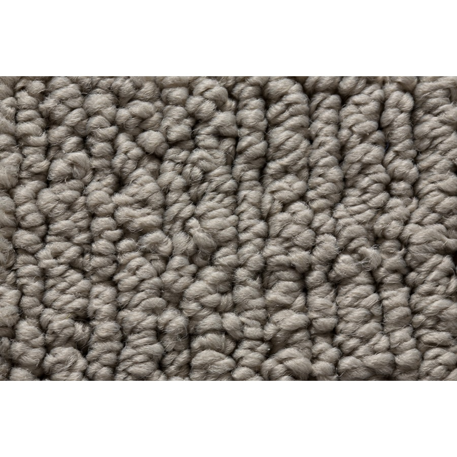 Royalty Carpet Mills Active Family Sojourn Surface Mix Berber Indoor Carpet