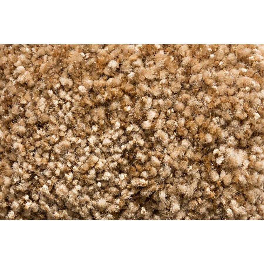 Royalty Carpet Mills Trusoft Footloose Glisten Textured Indoor Carpet