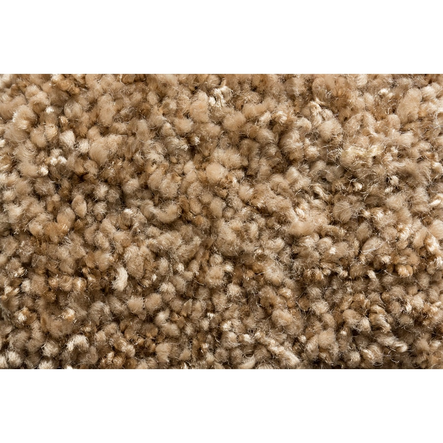 Royalty Carpet Mills TruSoft Footloose Splurge-Worth Textured Indoor Carpet