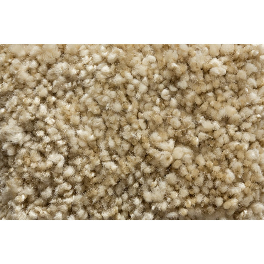 Royalty Carpet Mills TruSoft Footloose Tranquil Tones Textured Indoor Carpet