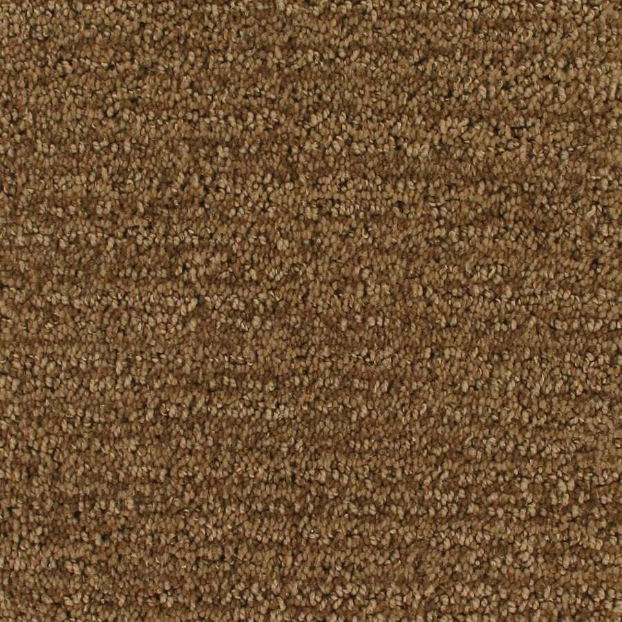 Royalty Carpet Mills Active Family Orion Timeline Pattern Interior Carpet