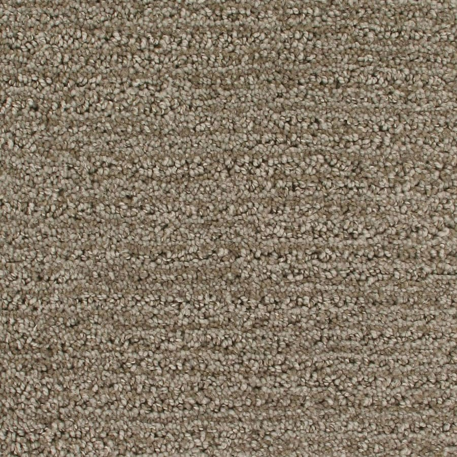 Royalty Carpet Mills Active Family Orion Ulysses Pattern Interior Carpet