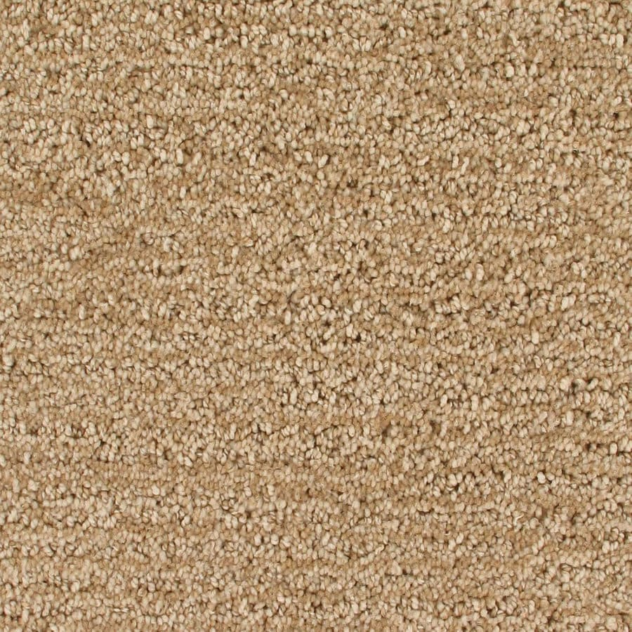 Royalty Carpet Mills Active Family Orion Irongate Pattern Indoor Carpet