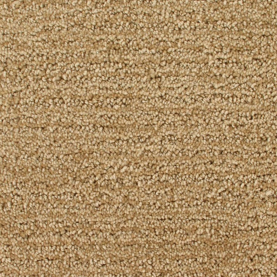 Royalty Carpet Mills Active Family Orion Newton Rings Pattern Interior Carpet