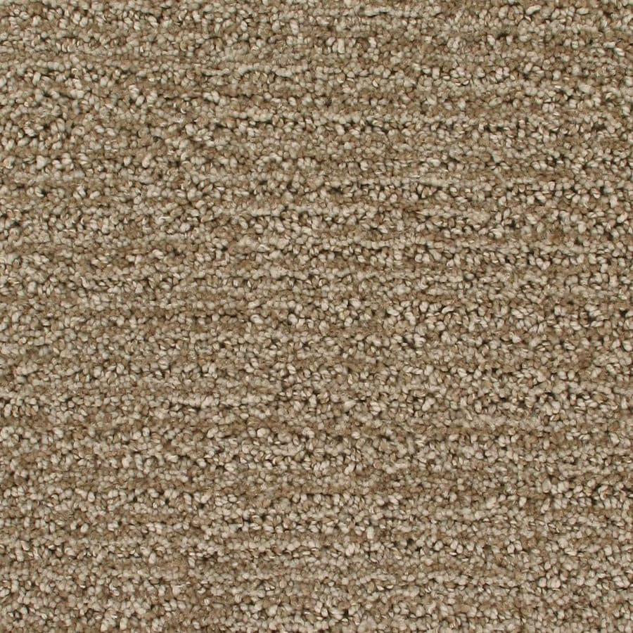 Royalty Carpet Mills Active Family Orion Early Morning Pattern Indoor Carpet