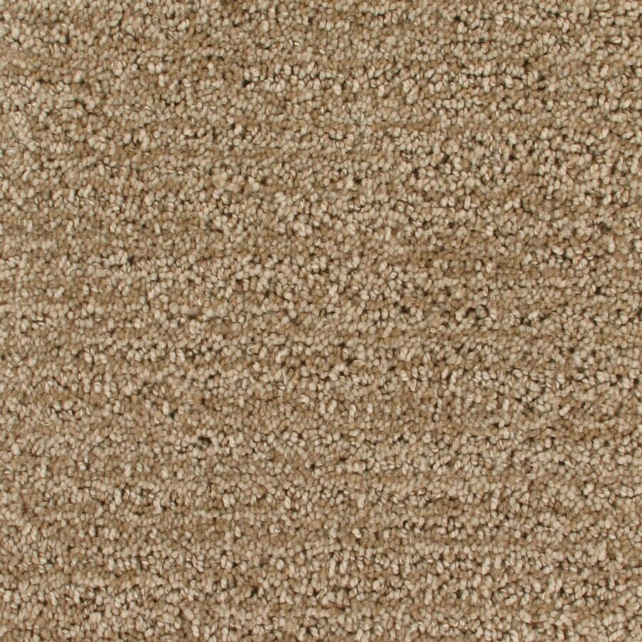 Royalty Carpet Mills Active Family Orion Combustion Pattern Indoor Carpet