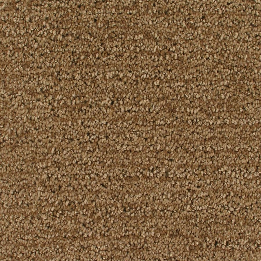 Royalty Carpet Mills Active Family Orion Surface Pattern Indoor Carpet