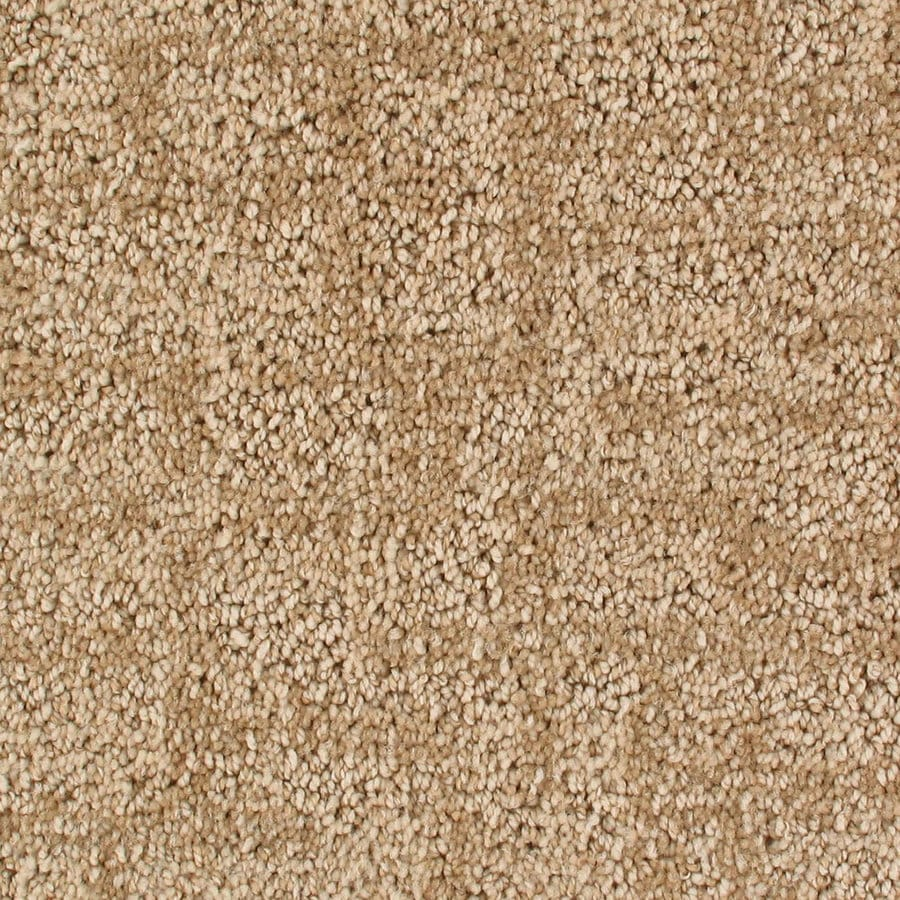 Royalty Carpet Mills Active Family Galaxy Irongate Pattern Indoor Carpet