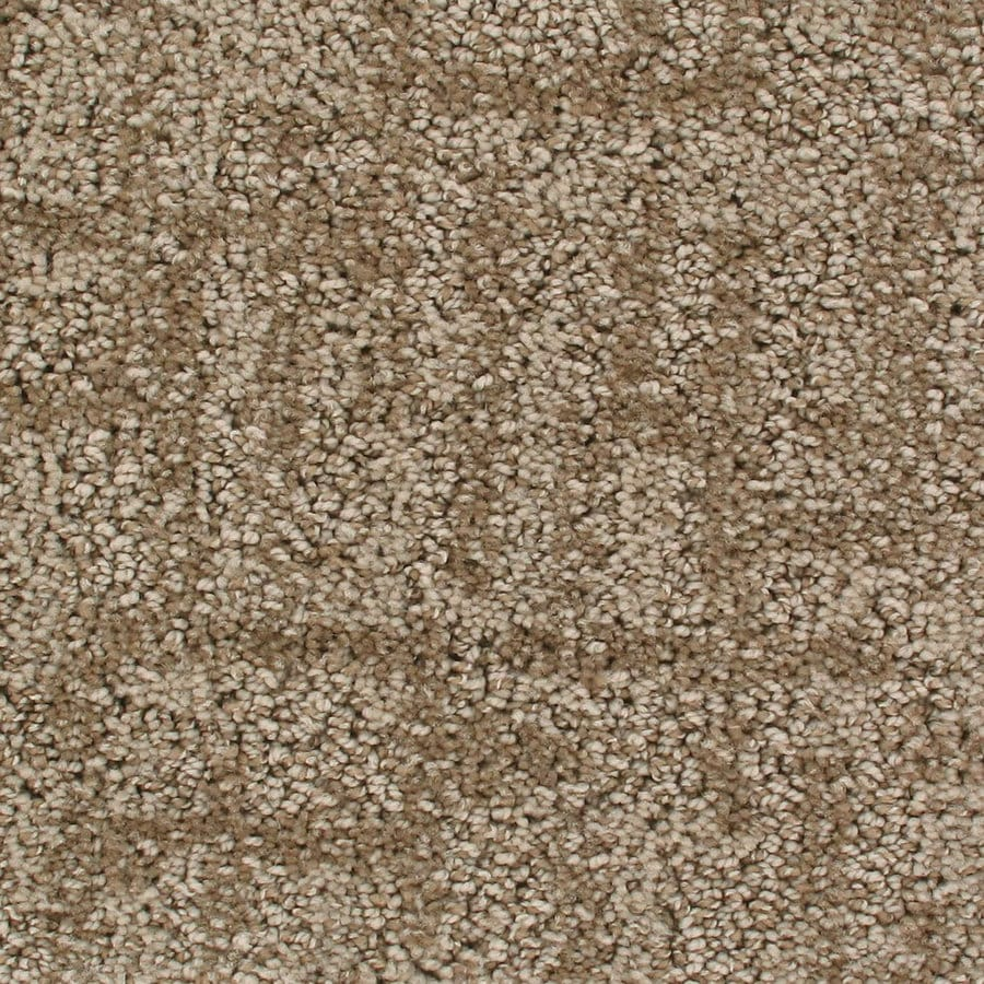 Royalty Carpet Mills Active Family Galaxy Early Morning Pattern Indoor Carpet