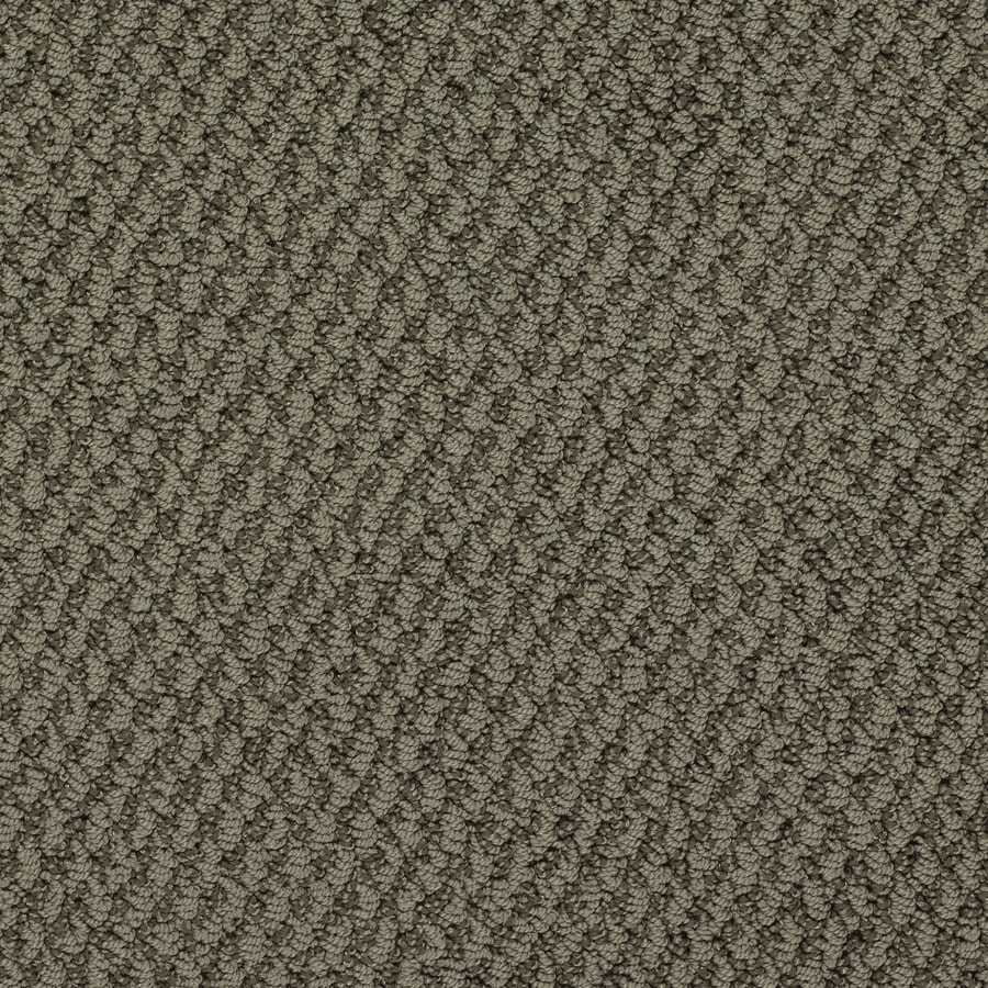 STAINMASTER Active Family Oracle Notre Dame Berber/Loop Interior Carpet