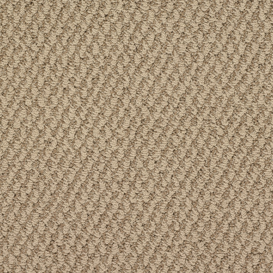 Royalty Carpet Mills Active Family Oracle Versailles Berber/Loop Interior Carpet