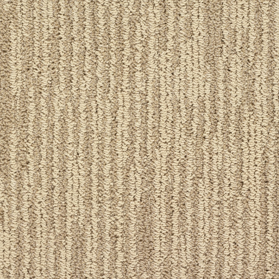 STAINMASTER Active Family Olympian Niagara Falls Berber/Loop Interior Carpet