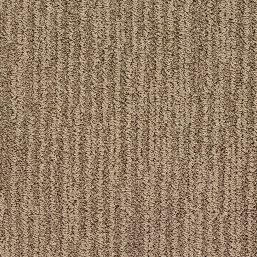 STAINMASTER Active Family Olympian Taj Mahal Berber/Loop Interior Carpet