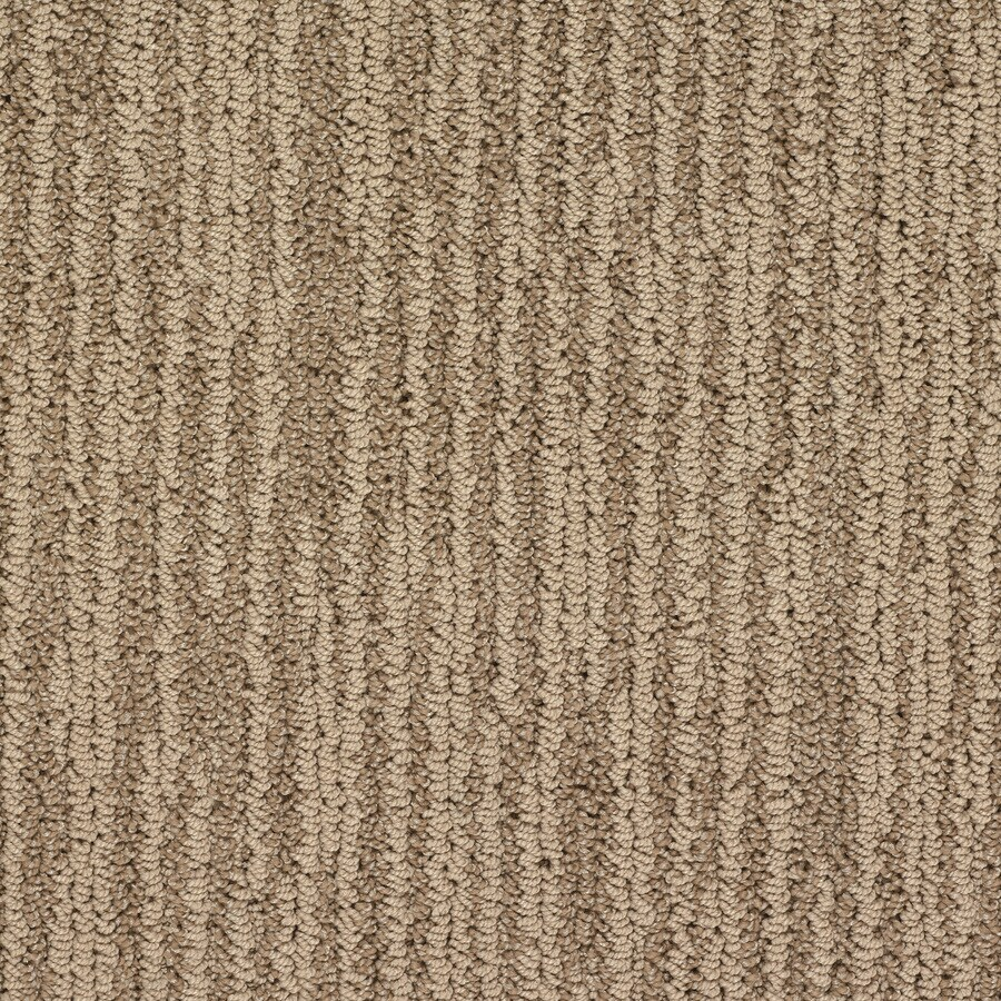 STAINMASTER Active Family Olympian Versailles Berber Indoor Carpet