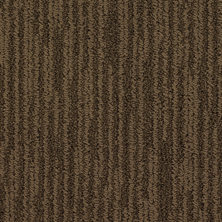 STAINMASTER Active Family Olympian Hoover Dam Berber/Loop Interior Carpet
