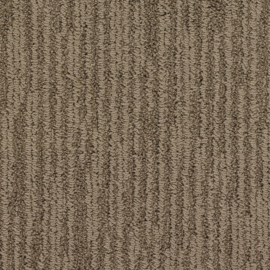 STAINMASTER Active Family Olympian Stonehenge Berber/Loop Interior Carpet