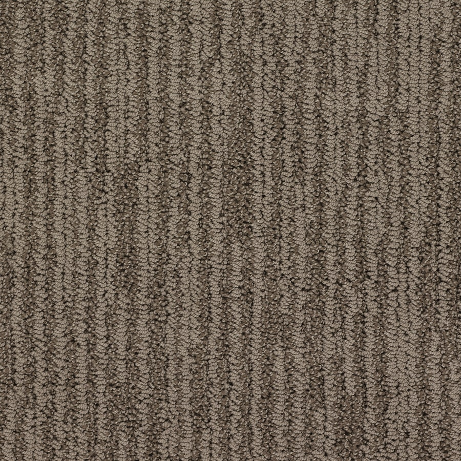 STAINMASTER Active Family Olympian Oliver Twist Berber Indoor Carpet