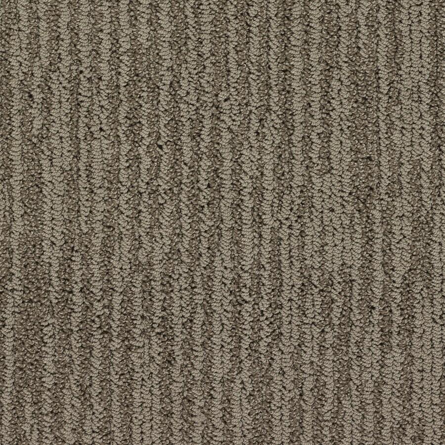 STAINMASTER Active Family Olympian King Tut Berber/Loop Interior Carpet