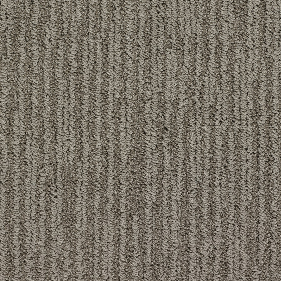 STAINMASTER Active Family Olympian Times Square Berber/Loop Interior Carpet