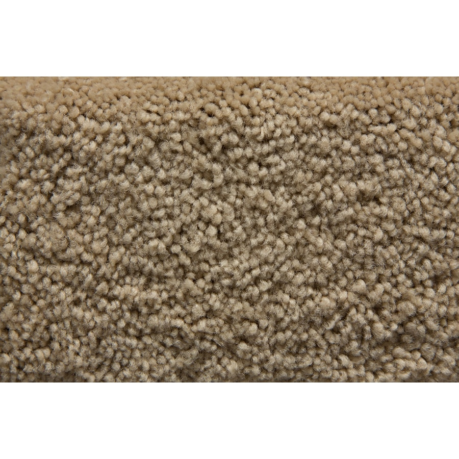 STAINMASTER Active Family Savoy Colossal Saxony Indoor Carpet