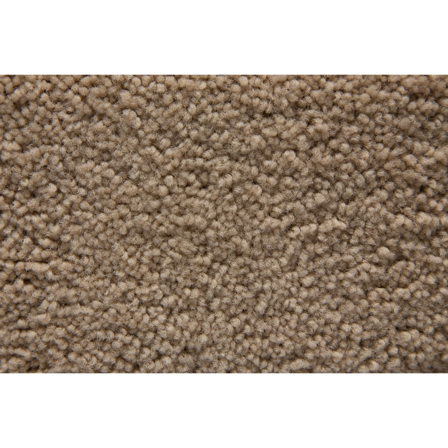STAINMASTER Active Family Savoy Vanity Plush Interior Carpet