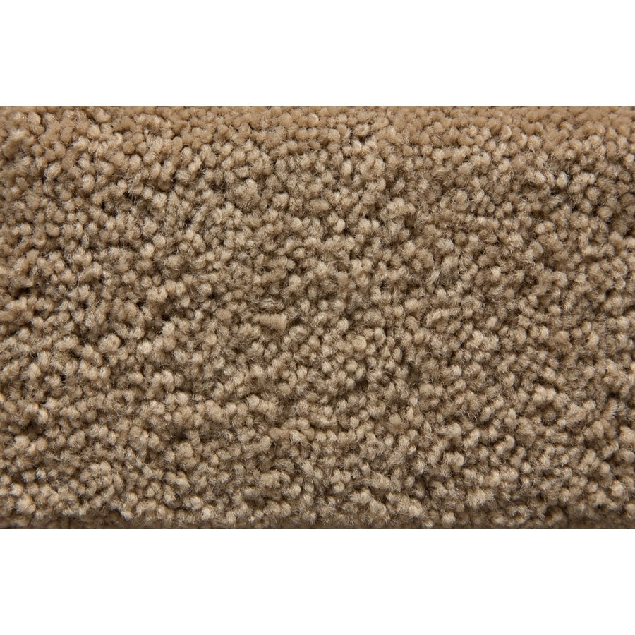 STAINMASTER Active Family Savoy Nirvana Saxony Indoor Carpet