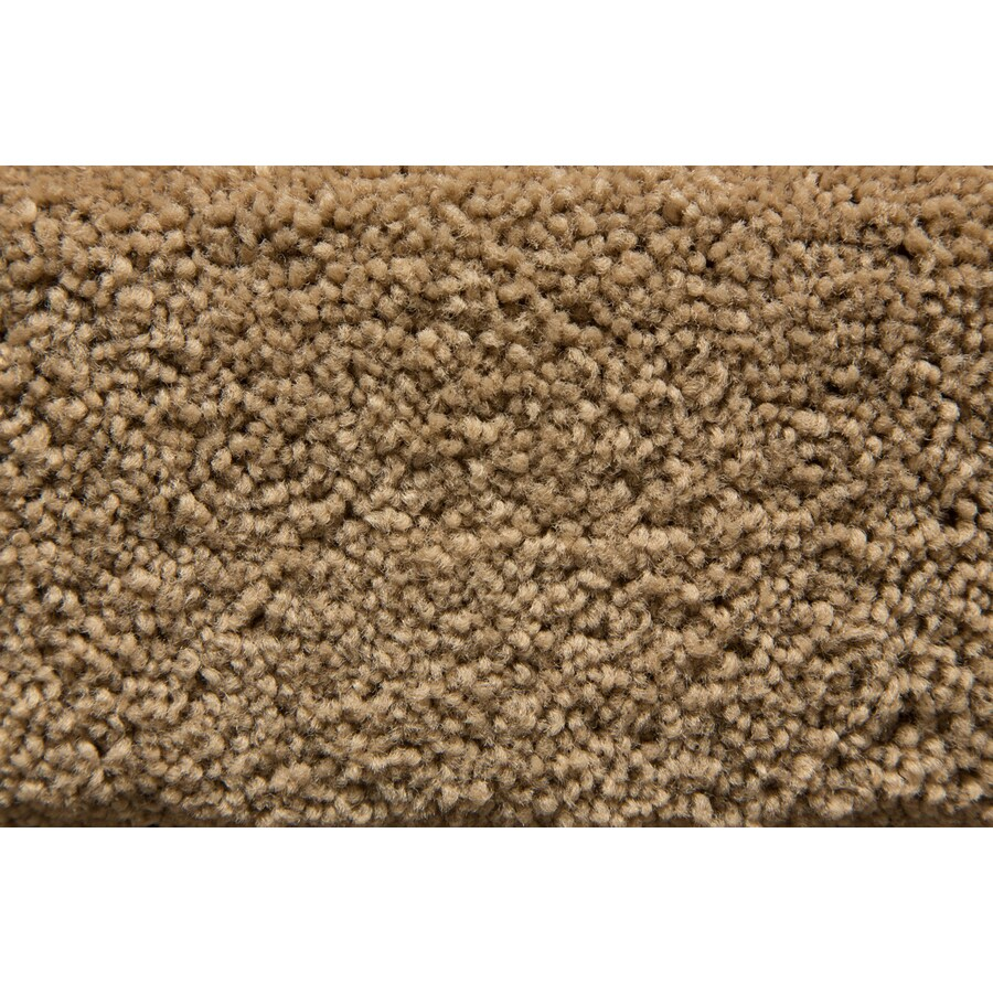 STAINMASTER Active Family Savoy Loam Plush Interior Carpet
