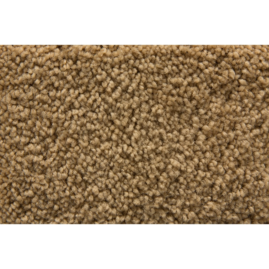 STAINMASTER Active Family Savoy Suede Saxony Indoor Carpet