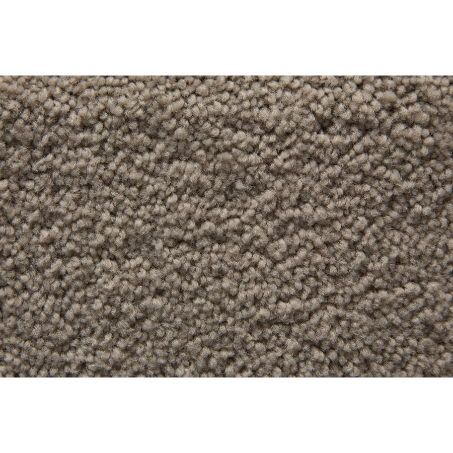 STAINMASTER Active Family Savoy Leaden Saxony Indoor Carpet