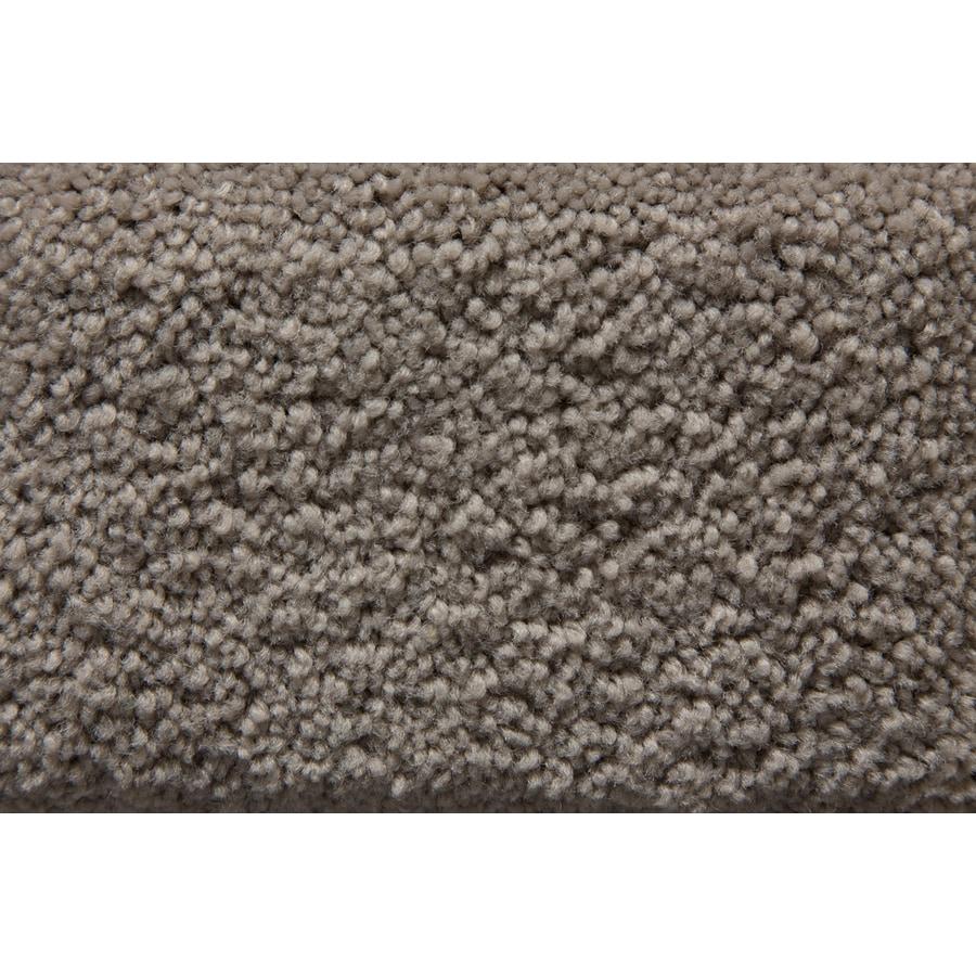 STAINMASTER Active Family Savoy Gunmetal Plush Interior Carpet