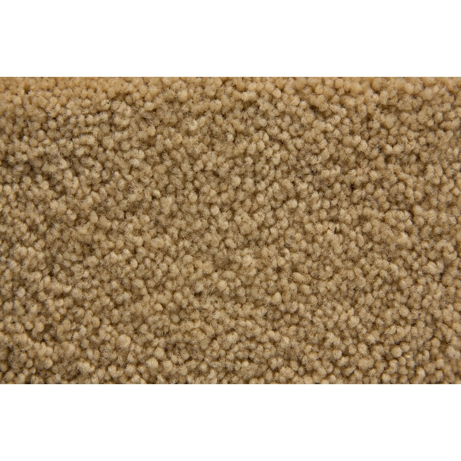STAINMASTER Active Family Savoy Golden Plush Interior Carpet