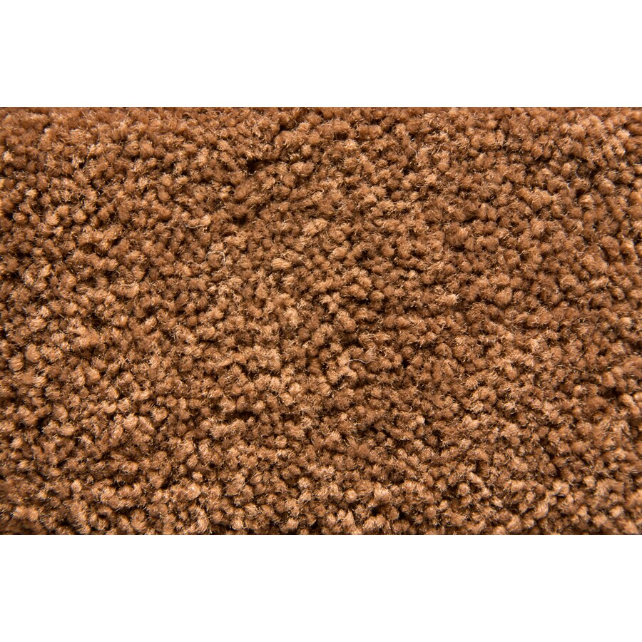 STAINMASTER Active Family Savoy Sorrel Plush Interior Carpet
