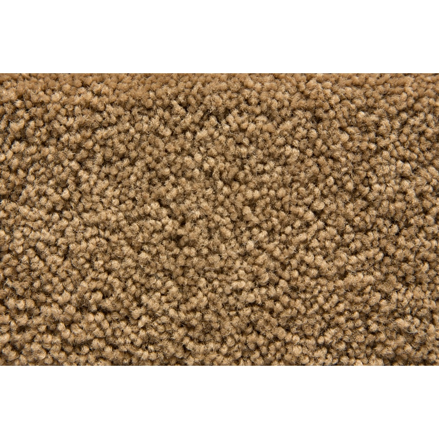 STAINMASTER Active Family Savoy Montage Plush Interior Carpet