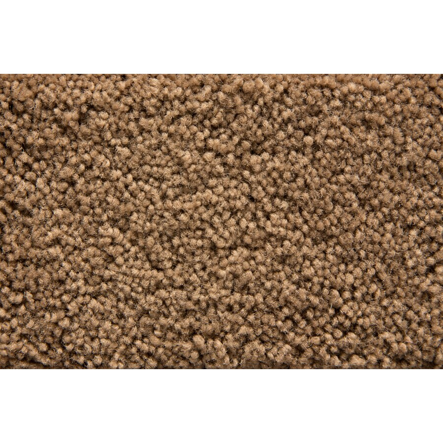 STAINMASTER Active Family Savoy Chestnut Plush Interior Carpet