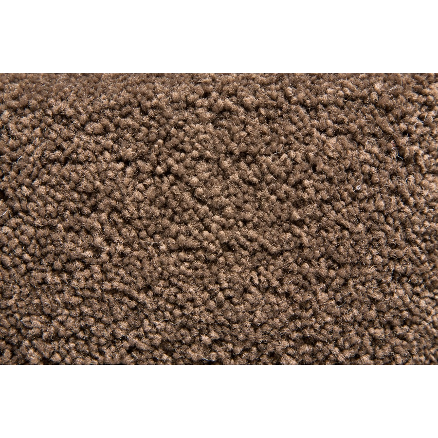STAINMASTER Active Family Savoy Nutbrown Plush Interior Carpet