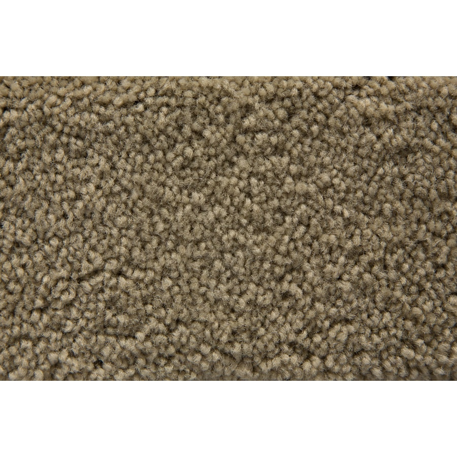 STAINMASTER Active Family Savoy Sauterne Plush Interior Carpet