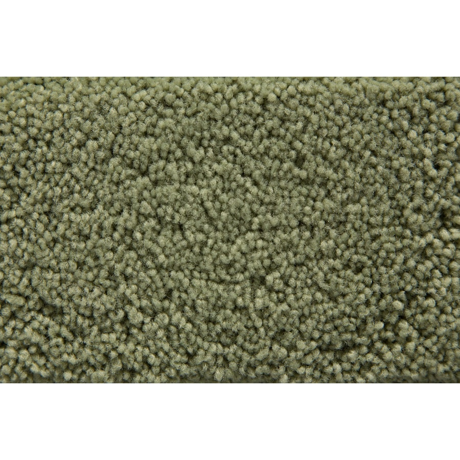 STAINMASTER Active Family Savoy Meadow Plush Interior Carpet