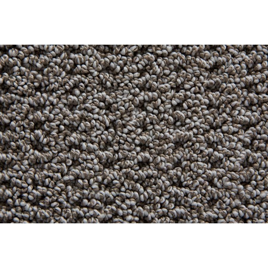 STAINMASTER TruSoft Compassion Tweed Pattern Interior Carpet