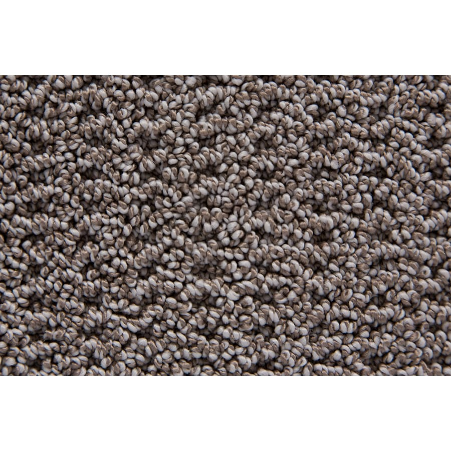 STAINMASTER TruSoft Compassion Silvertaupe Pattern Indoor Carpet