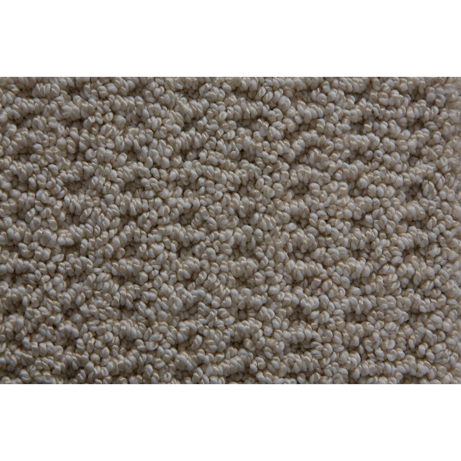 STAINMASTER TruSoft Merriment Angelica Pattern Interior Carpet