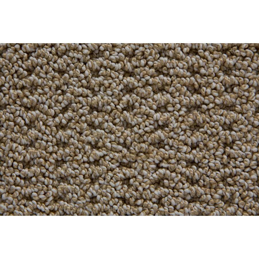 STAINMASTER TruSoft Merriment Playa Pattern Interior Carpet