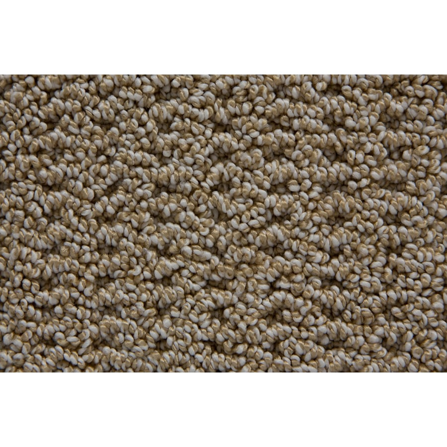 STAINMASTER TruSoft Merriment Playa Pattern Indoor Carpet