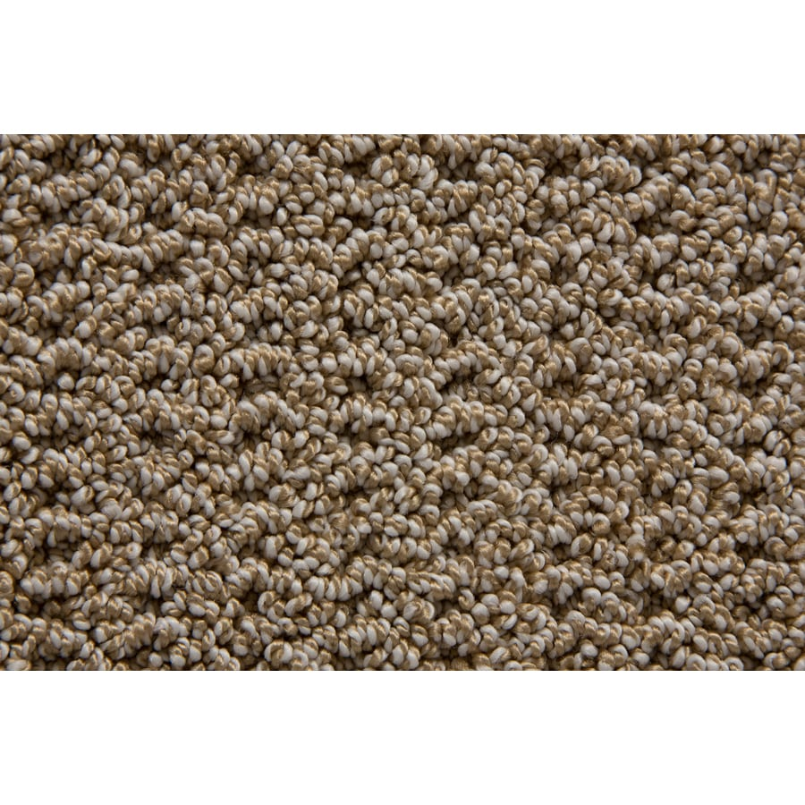 STAINMASTER TruSoft Merriment Palmetto Pattern Indoor Carpet