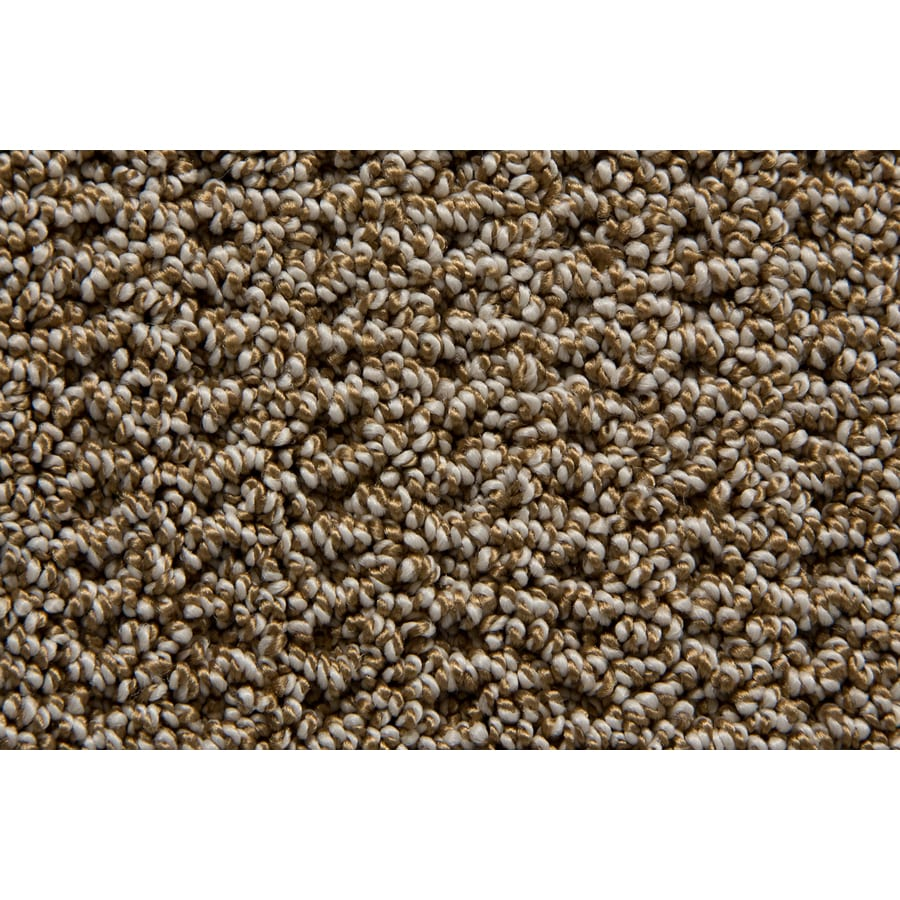 STAINMASTER TruSoft Merriment Beacon Pattern Indoor Carpet