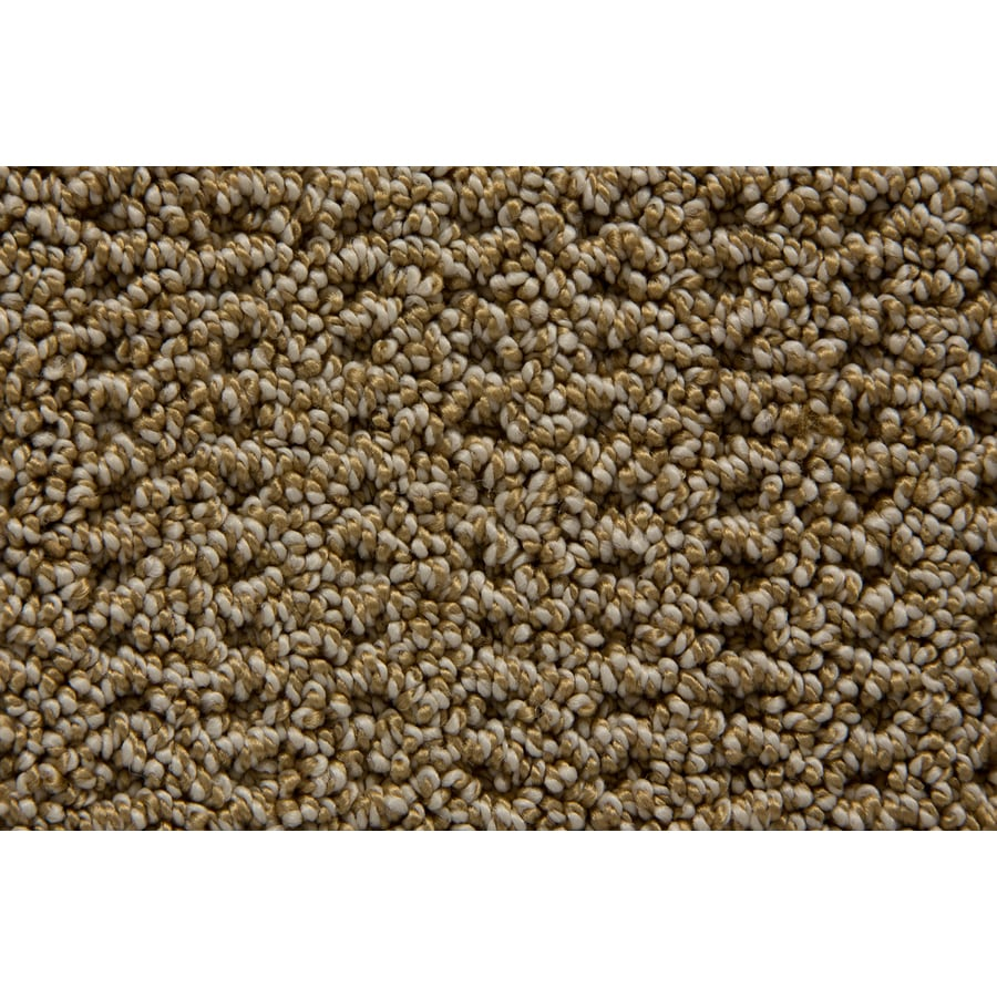 STAINMASTER TruSoft Merriment Wheatland Pattern Indoor Carpet