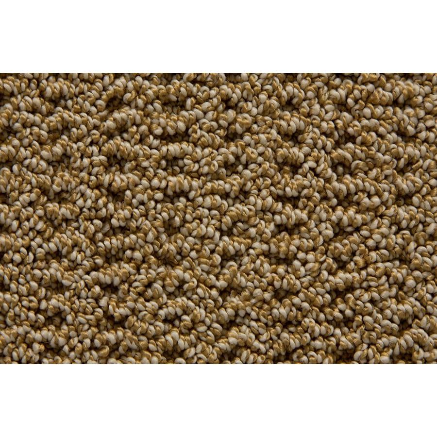 STAINMASTER TruSoft Merriment Galley Pattern Indoor Carpet