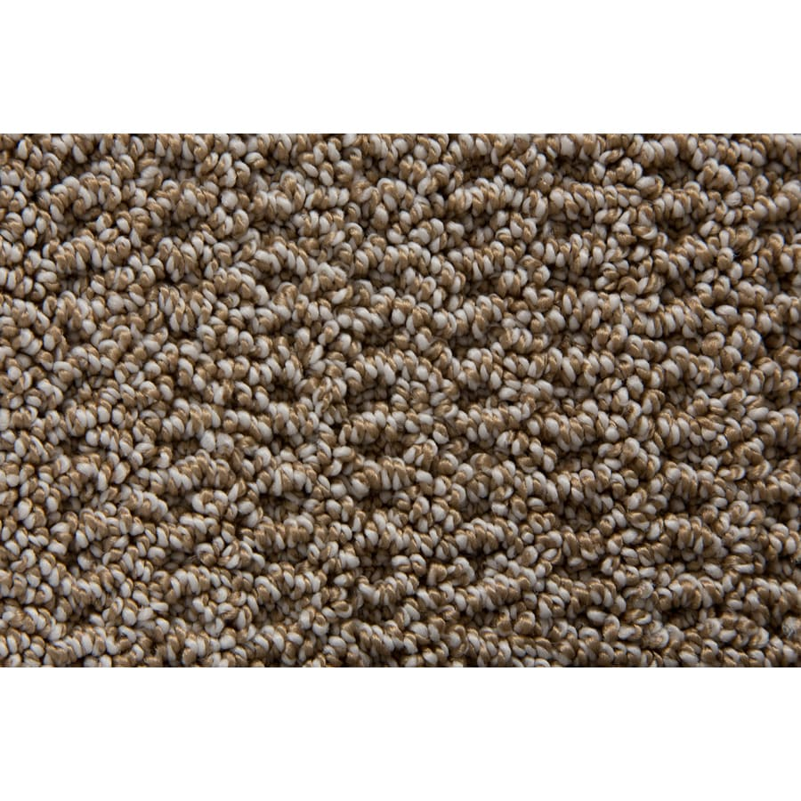 STAINMASTER TruSoft Merriment Cavern Pattern Interior Carpet