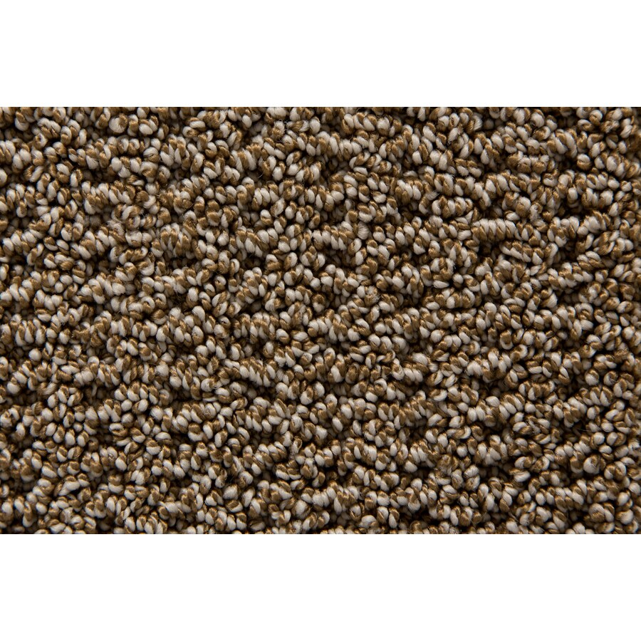 STAINMASTER TruSoft Merriment Stonehenge Pattern Indoor Carpet